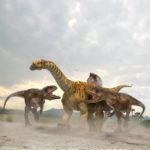 Allosaurus attacking a sauropod