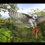 Harpy Eagle carrying off Howler Monkey