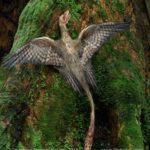 Microraptor climbs a tree
